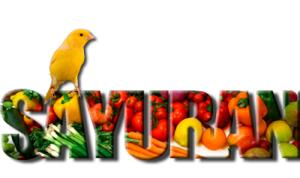 sayuran